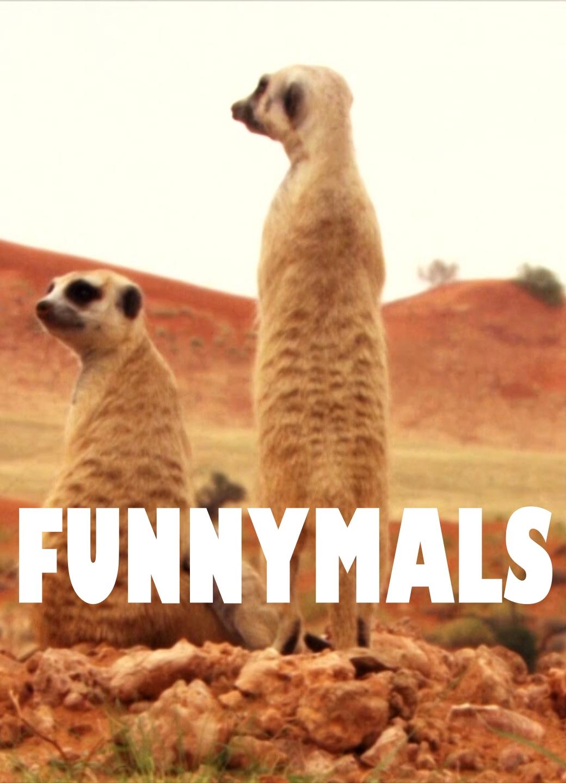 Funnymals